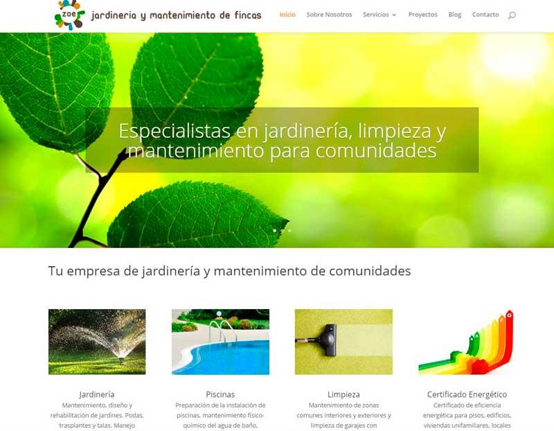 imagen-inicio-web-zoe-mantenimiento